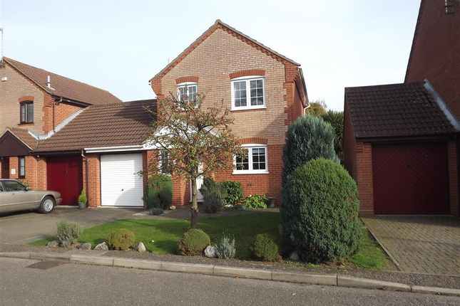 Thumbnail Property to rent in Acle, Norwich