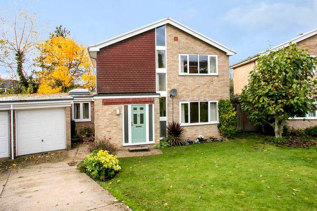 Thumbnail Detached house to rent in Broad Oak Close, Tunbridge Wells