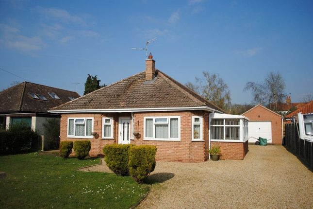 Thumbnail Bungalow to rent in Sandy Way, Ingoldisthorpe, King's Lynn