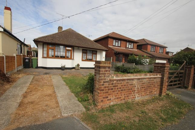 Thumbnail Detached bungalow for sale in Albert Road, Ashingdon, Rochford