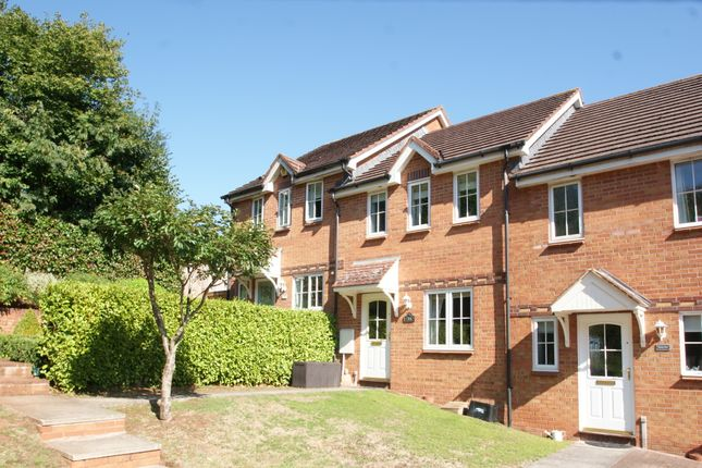 Thumbnail Terraced house for sale in Kittiwake Drive, Torquay