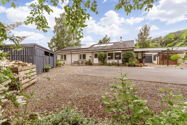 Thumbnail Bungalow for sale in Camserney, Aberfeldy