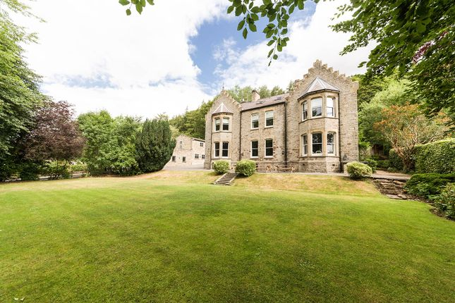 Thumbnail Country house for sale in Lifestyle & Business Opportunity, High Street, Stanhope, County Durham