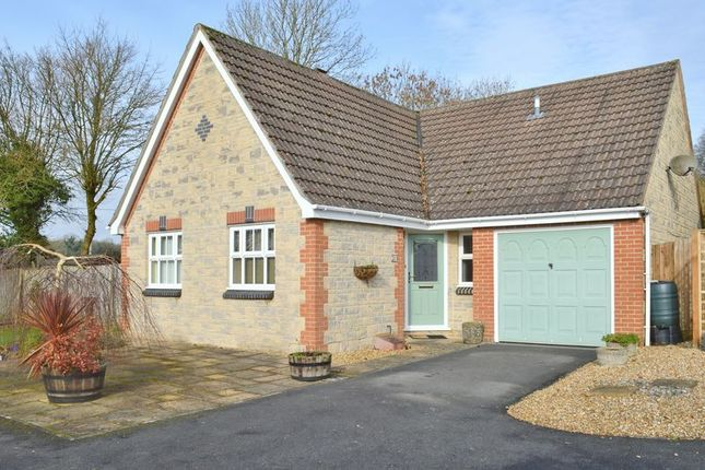 Thumbnail Detached bungalow for sale in Prospect Place, Mere, Warminster