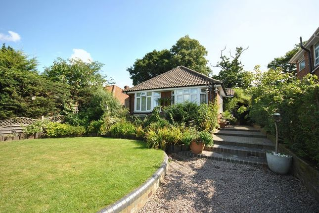 Thumbnail Detached bungalow for sale in Burma Road, Old Catton, Norwich
