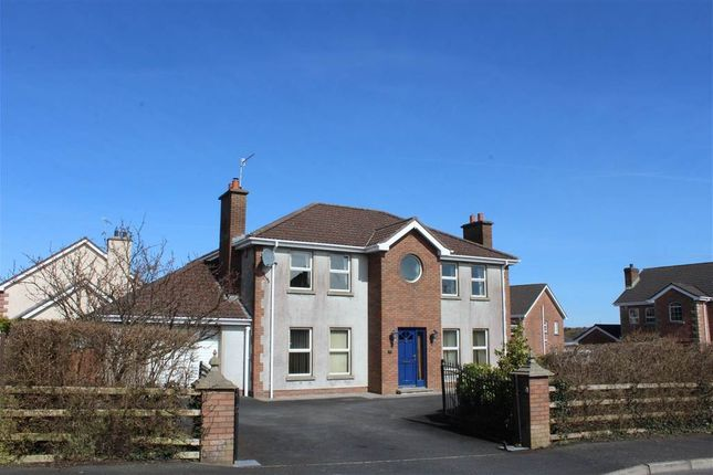 Thumbnail Detached house for sale in Highfields Avenue, Newry