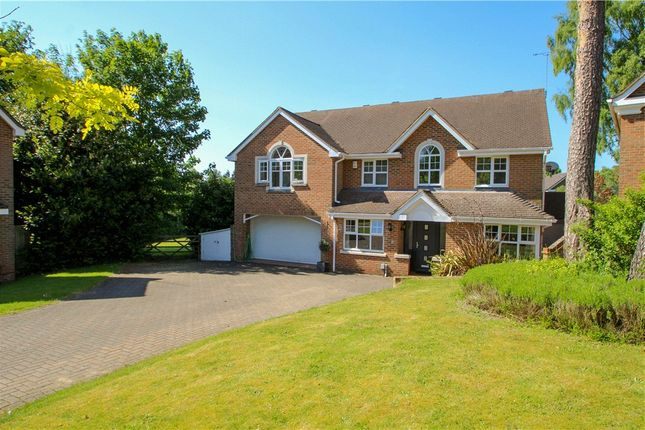 Thumbnail Detached house for sale in Eliot Close, Camberley, Surrey