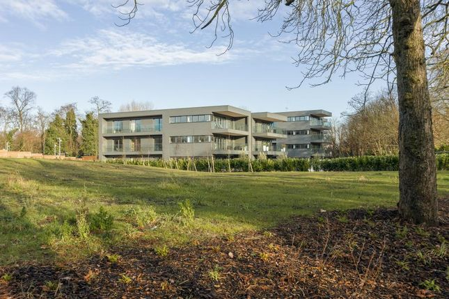 Thumbnail Flat for sale in Halcyon Close, Barnes