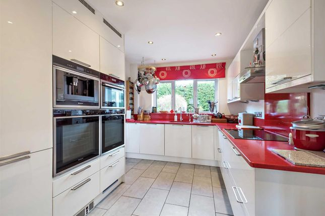 Thumbnail Detached house for sale in Western Road, Hailsham