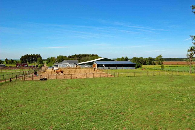 Thumbnail Equestrian property for sale in Biggar Road, Carnwath