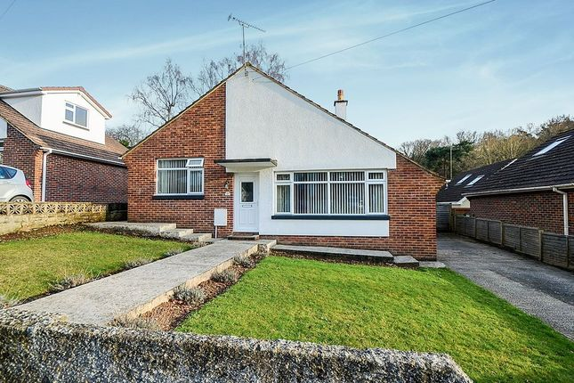 Thumbnail Bungalow for sale in Newtake Rise, Newton Abbot