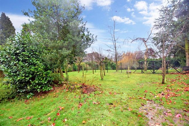 Rear Garden of Hammerwood Road, Ashurst Wood, West Sussex RH19