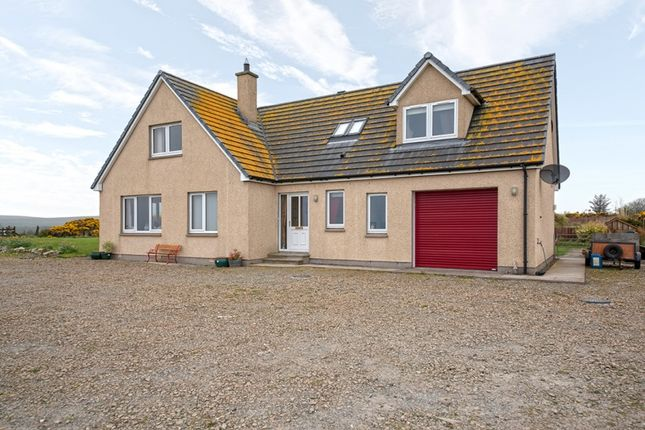 Thumbnail Detached house for sale in Burrigle, Forse, Lybster, Highland