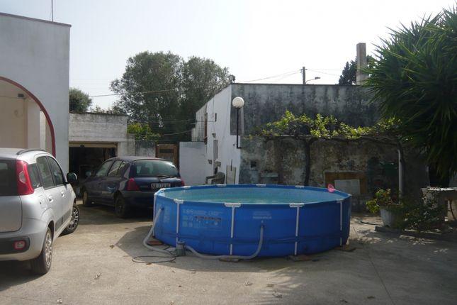 Lamia of Casa Alessio, San Vito Dei Normanni, Puglia, Italy