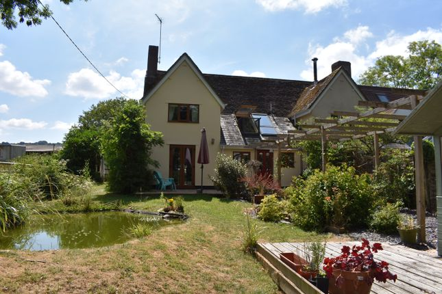 Thumbnail Cottage for sale in Paradise Row, Woolland, Blandford Forum
