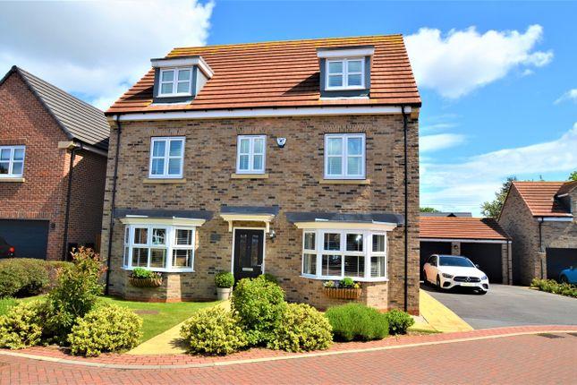 Thumbnail Detached house for sale in Badgers Holt, Branton, Doncaster