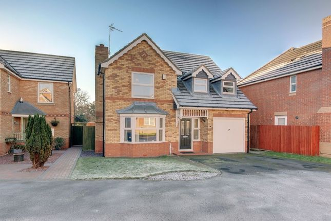 Thumbnail Detached house for sale in Alexandra Gardens, North Shields