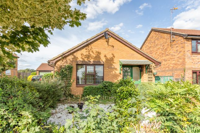 Thumbnail Detached bungalow to rent in Grange Road, Redhill Grange, Wellingborough