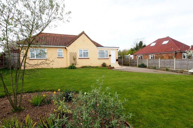 Thumbnail Detached bungalow for sale in Park Lane, Silfield, Wymondham