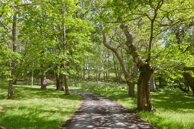 Driveway of Rockford Common, Ringwood, Hampshire BH24