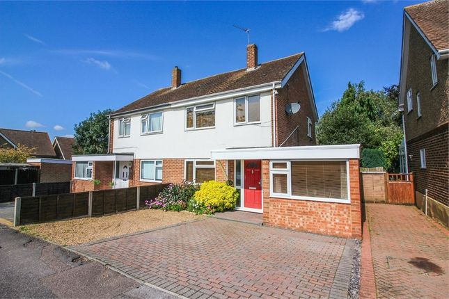 Thumbnail Semi-detached house for sale in Pyenest Road, Harlow, Essex