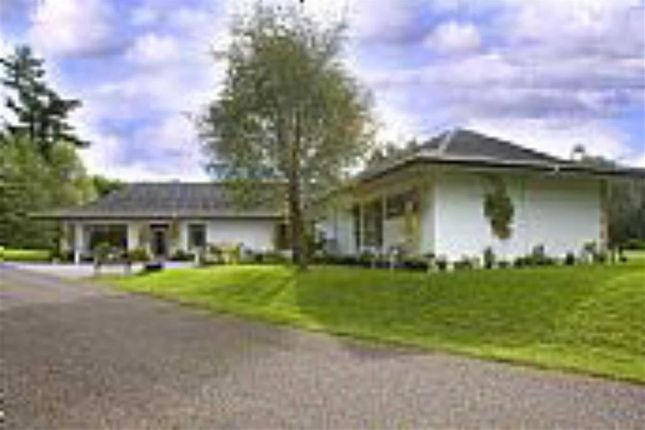 Thumbnail Detached bungalow for sale in Balnain, Drumnadrochit, Inverness