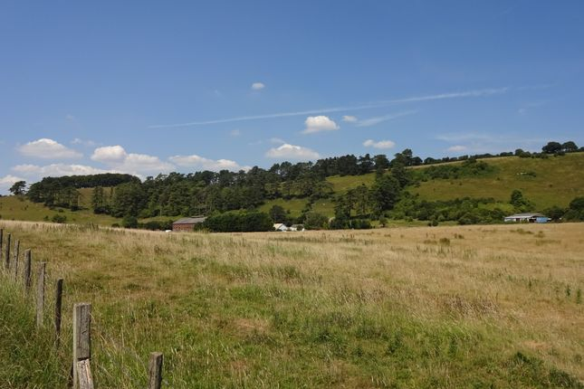 Thumbnail Farm for sale in Lydden, Dover