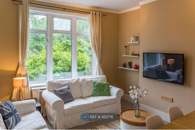 Thumbnail Flat to rent in George Lane, London