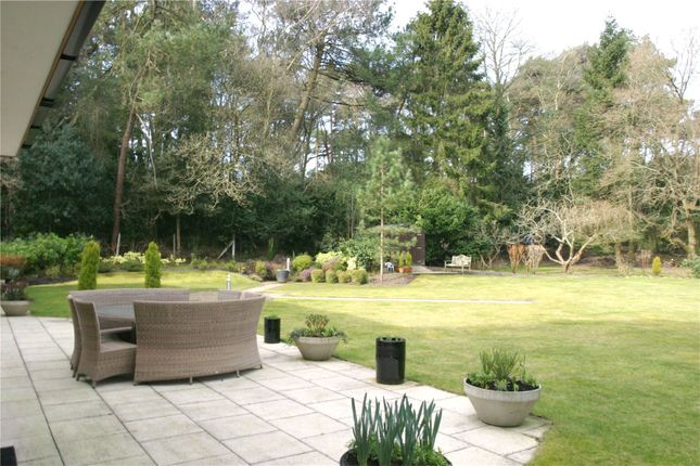 Picture 9 of Bury Road, Branksome Park, Poole BH13