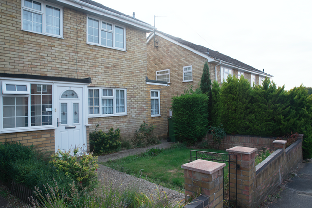 Thumbnail Semi-detached house to rent in Loveridge Close, Basingstoke, Hampshire