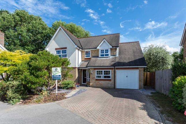 Thumbnail Detached house for sale in Larkspur Way, Southwater, Horsham