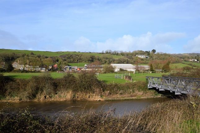 Thumbnail Farm for sale in Bridgwater Road, Bleadon, North Somerset