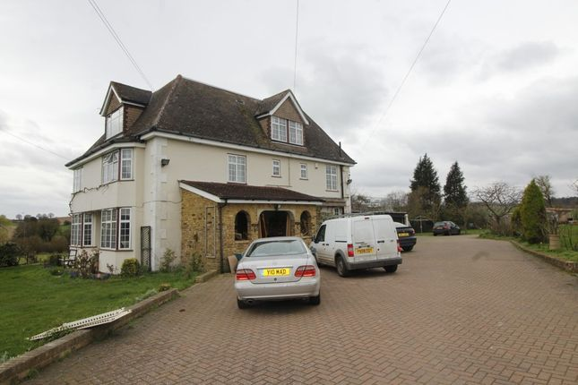 Thumbnail Bungalow to rent in St. Albans Road, Codicote, Hitchin