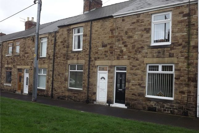 Thumbnail Terraced house to rent in Esh Terrace, Langley Park, Co Durham