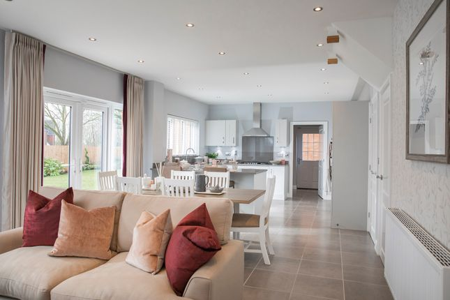 Thumbnail Detached house for sale in The Delamere, Bluebell Meadows, Fulwood