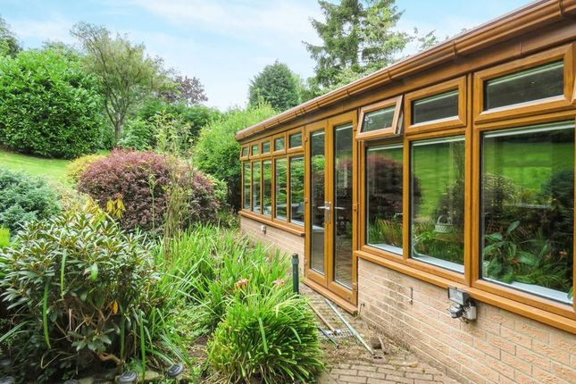 Thumbnail Detached house for sale in The Dell, Morpeth