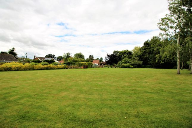 Thumbnail Detached bungalow for sale in Mill Lane, York