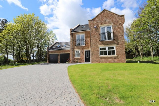 Thumbnail Detached house for sale in Dalton Piercy, Hartlepool