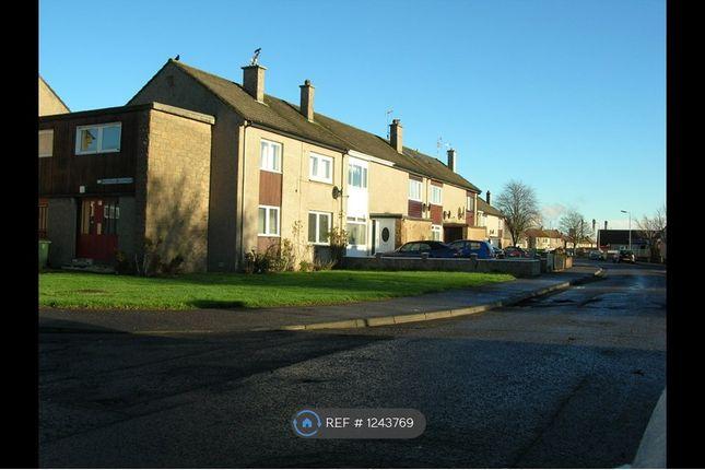 1 bed flat to rent in Grangemouth, Grangemouth FK3