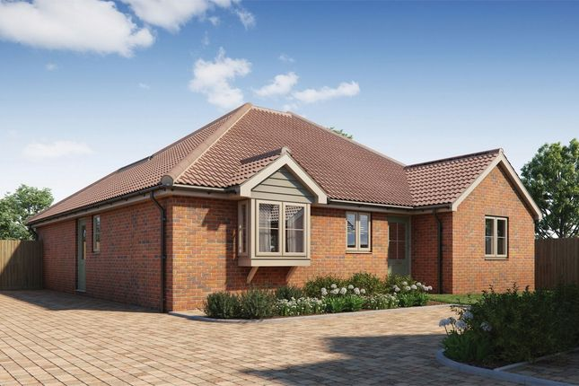 Thumbnail Detached bungalow for sale in Wivenhoe Road, Alresford, Colchester, Essex