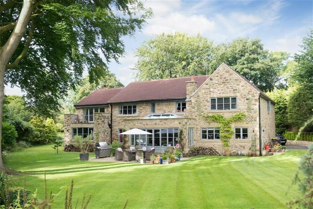 Thumbnail Detached house for sale in Farnham, Knaresborough, North Yorkshire