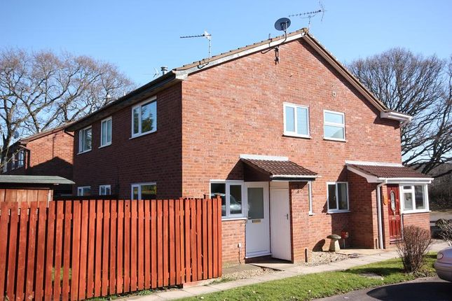 Thumbnail End terrace house to rent in Orchid Close, Taunton