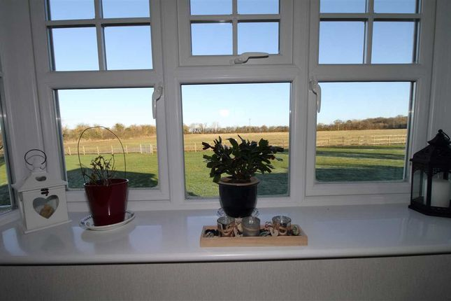 Thumbnail Property for sale in Meadow Close, Redlands Park, Warwick