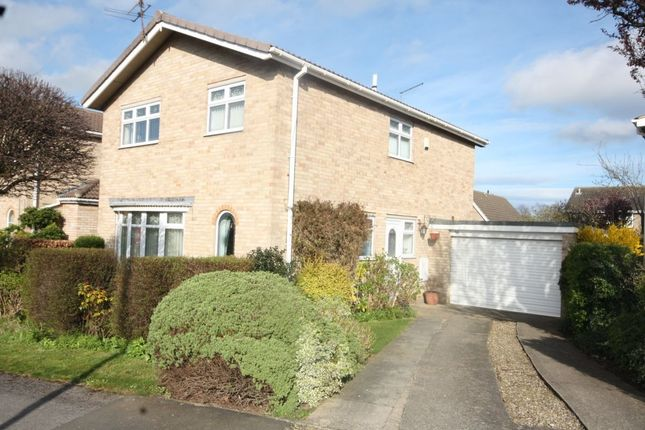 Thumbnail Detached house for sale in Staindale, Guisborough