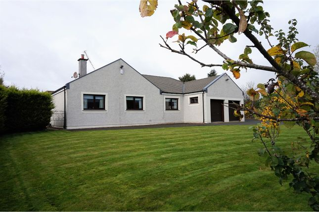 Thumbnail Bungalow for sale in Gairney Bank, Kinross