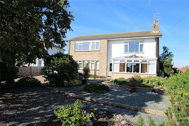 Thumbnail Detached house for sale in Chesswood Road, Worthing, West Sussex
