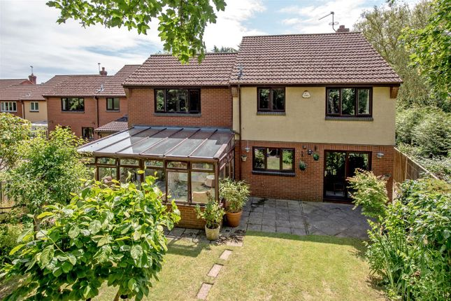 Thumbnail Detached house for sale in Lydeard Mead, Bishops Lydeard, Taunton