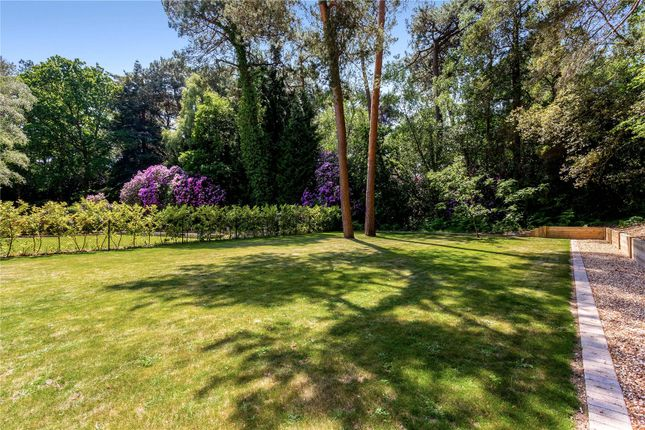 Garden of Leicester Road, Branksome Park, Poole, Dorset BH13