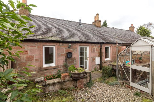 Thumbnail Terraced bungalow to rent in Poplar Row, Northmuir, Kirriemuir