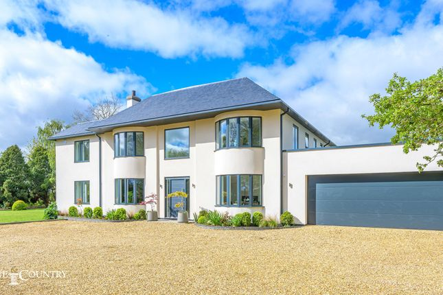 Thumbnail Detached house for sale in Lincoln Road, Deeping Gate, Peterborough